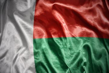 shining madagascar flag
