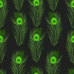 Vector seamless pattern peacock feathers