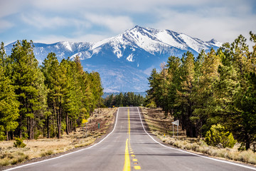 Zelfklevend Fotobehang Arizona landscape with Humphreys Peak Tallest in Arizona