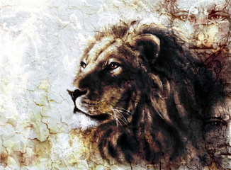 beautiful  painting of a lion head and mystic faces