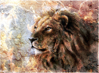 beautiful  painting of a lion head with a majesticaly peaceful