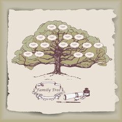 Hand-drawn family tree with decorative elements. Vector