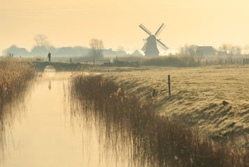 Walking the dog in the Dutch countryside on a foggy morning.