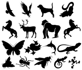 set animal silhouettes