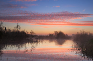Fotomurales - Colorful sunrise over a wetland in Drenthe, the Netherlands.
