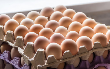 Trays with eggs
