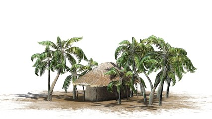 Hut under palm trees - isolated on white background