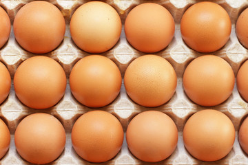 Raw eggs in tray