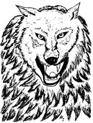 Foto op Canvas Hand getrokken schets van dieren Abstract Wolf Sketch