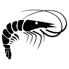 Black Shrimp - illustration