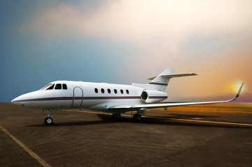 Private jet airplane parking at the airport. Wall mural