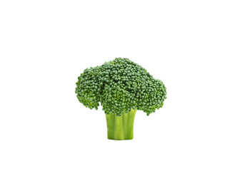 Fresh green raw broccoli, isolated on white