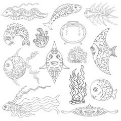 Design set with grpahic fish, aquarium and sea weed