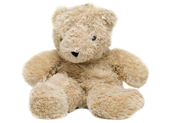 brown bear doll on white background