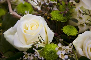 weiße Rose zum Abschied