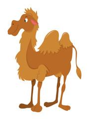 Cartoon Happy Camel Standing