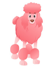 Cartoon Pink Poodle
