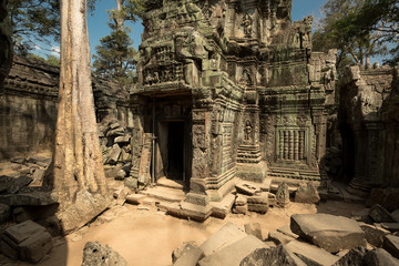 Ta Prohm carving details and ruins