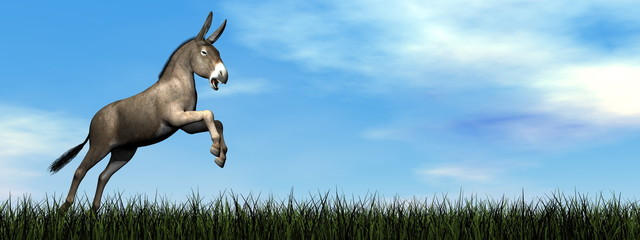 Donkey jumping - 3D render