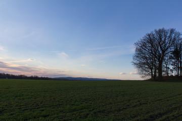 Hasenbuckl next to Schwandorf