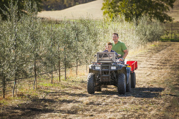 Father driving son on four wheeler in olive grove