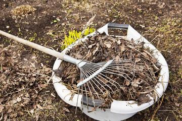 Spring cleaning in a kitchen garden