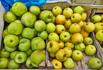Green yellow apples market