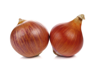 shallot on white background