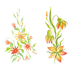 watercolor beautiful flowers with leaves