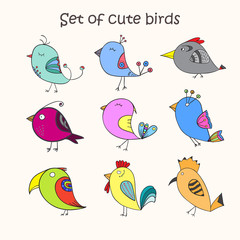Set of 9 cute birds in vector. Colorful birds doodle collection.