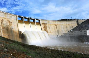 Montoro Reservoir, Ciudad Real Province, Spain