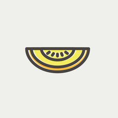 Melon thin line icon
