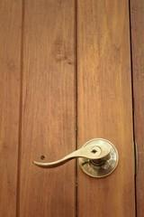 Door handles of a brown wooden door.