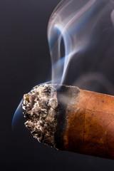Rauchende Zigarre