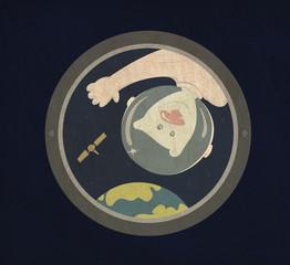 медведь космонавт