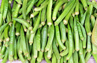 Lady Finger (Okra)