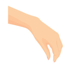 Vector of beautiful Woman's hand isolated on white background