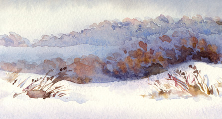Watercolor winter landscape. Snowy field with dry shrubs