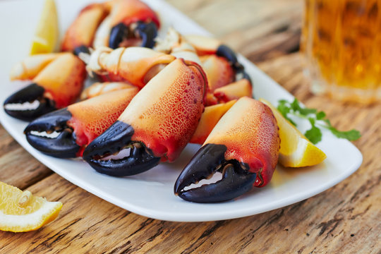 Boiled crab claws on a plate and beer
