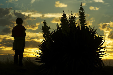 woman on beach dunes with flowers at sunset silhouette