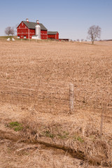 Farm Homestead Red Barn Cut Straw Harvested Field