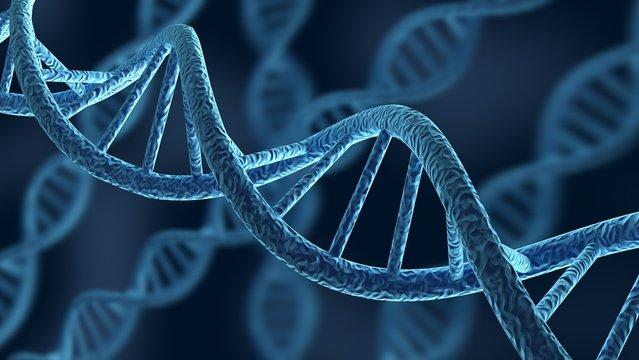 DNA. 3D. DNA Strands
