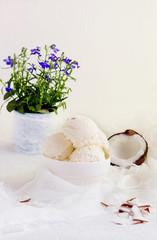 Coconut ice cream  homemade