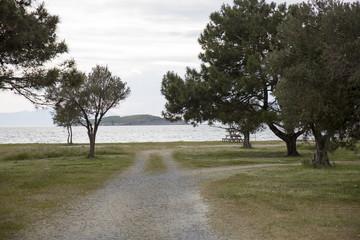 Plaja Giden Kırsal Yol