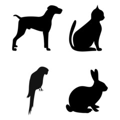 Dog, Cat, Parrot, Rabbit silhouettes - illustration