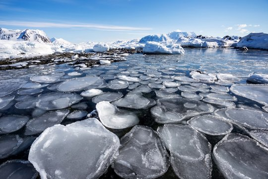 Freezing fjord in the Arctic - Spitsbergen