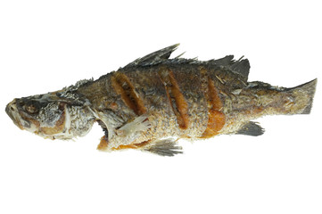 Deep fried fish isolated on white background, seafood