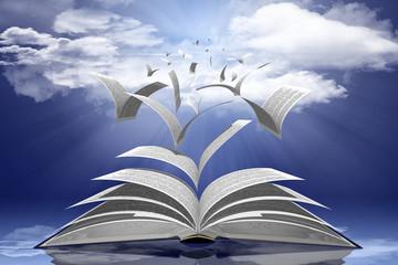 Libro2015003