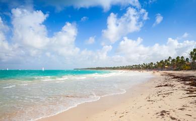 Coastal Caribbean landscape. Dominican republic