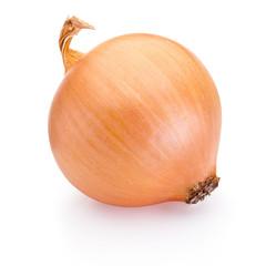 Fototapeta Ripe onion isolated on white background obraz